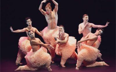 Spectacle : Tutu danse dans tous ses états